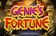 Игровые автоматы на деньги Genie's Fortune