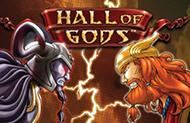 Лучший онлайн аппарат Hall of Gods